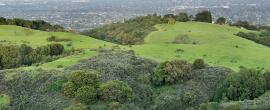 Open Space Preservation / Mitigation - Integra Realty Resources - Los Angeles